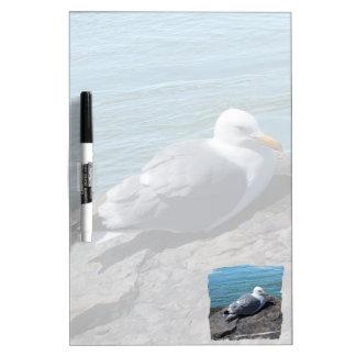 Gaviota de arenques que descansa sobre el tableros blancos