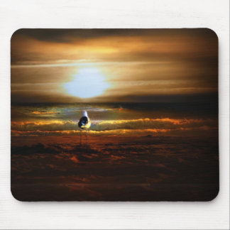 Gaviota de la puesta del sol tapetes de raton