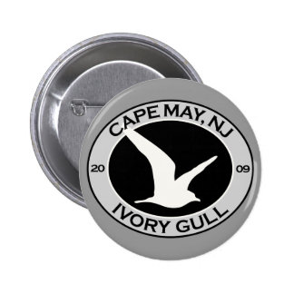 Gaviota de marfil de Cape May Pin