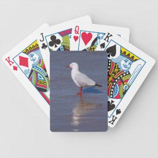 Gaviota de plata barajas de cartas