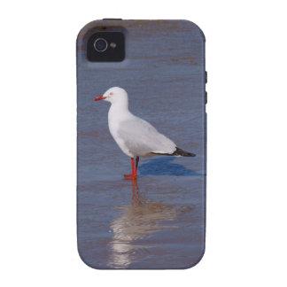 Gaviota de plata Case-Mate iPhone 4 fundas