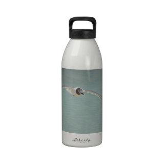Gaviota de risa de elevación botella de agua