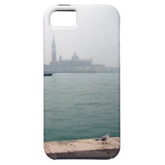 Gaviota de Venecia que camina en el muelle Funda Para iPhone SE/5/5s