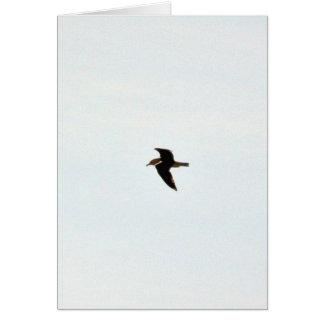 Gaviota del vuelo alta tarjeta de felicitación