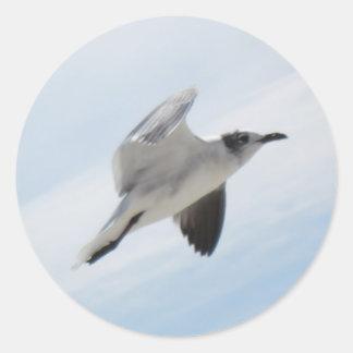 Gaviota del vuelo pegatinas redondas