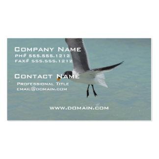 Gaviota del vuelo plantilla de tarjeta personal
