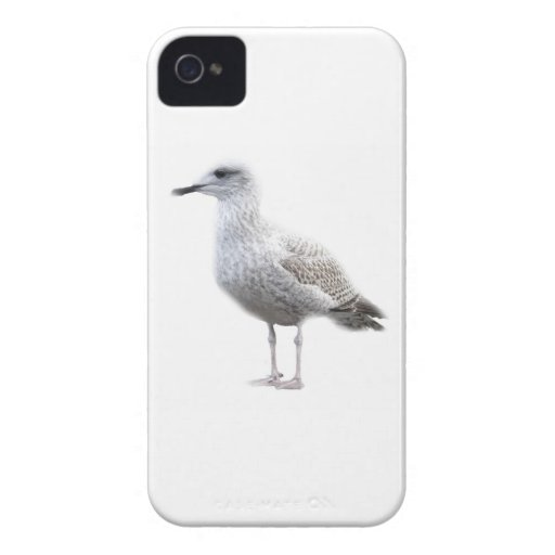 Gaviota en blanco Case-Mate iPhone 4 funda