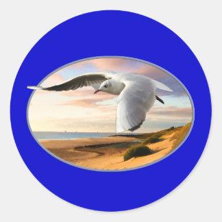 Gaviota en el ala sobre la playa pegatinas redondas