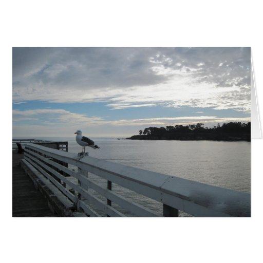 Gaviota en el embarcadero en la playa de estado de tarjeton