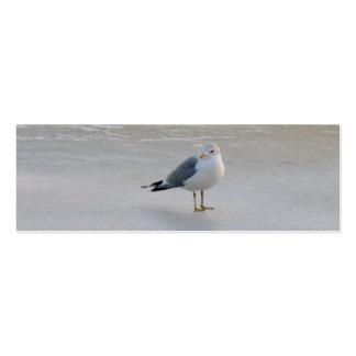 Gaviota en el hielo tarjetas de visita mini