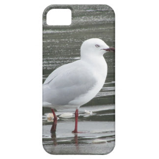 Gaviota en el mar funda para iPhone SE/5/5s