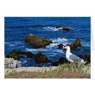 Gaviota en la Costa del Pacífico, tarjeta de nota
