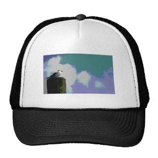 Gaviota en la fotografía posterized viruta del mue gorras de camionero