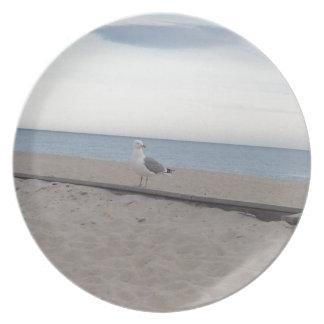 Gaviota en la playa platos de comidas