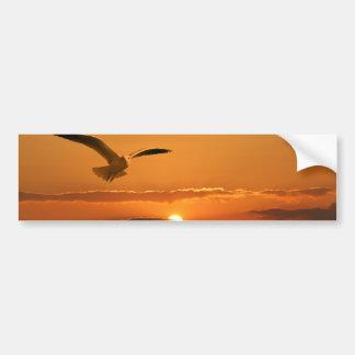 Gaviota en la puesta del sol pegatina para auto