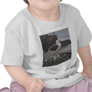 gaviota en roca en Cambria California Camiseta