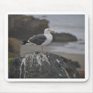 gaviota en roca en Cambria California Tapetes De Ratones