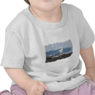 Gaviota en roca camisetas