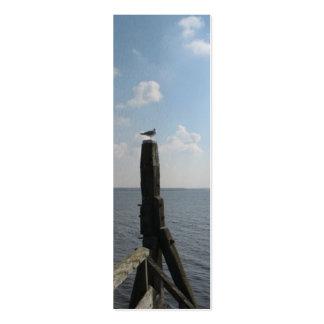 Gaviota en señal de la foto de poste y del mar tarjetas de visita mini