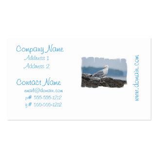 Gaviota en tarjetas de visita de la roca