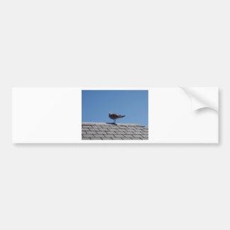 Gaviota en un tejado de pizarra pegatina de parachoque
