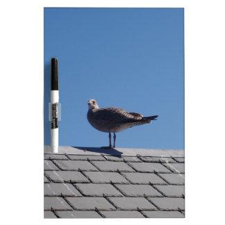 Gaviota en un tejado de pizarra