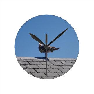 Gaviota en un tejado de pizarra reloj