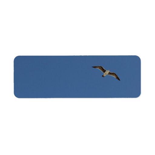 Gaviota en vuelo etiquetas de remite