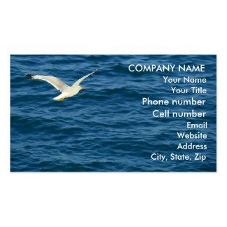 Gaviota en vuelo sobre el agua tarjetas de visita