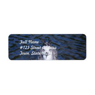 Gaviota flotante etiquetas de remite
