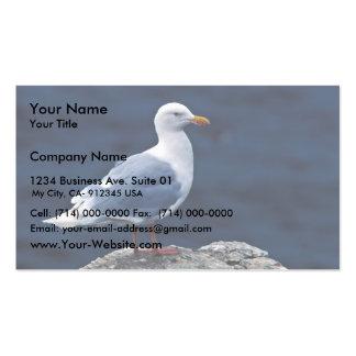Gaviota glauca tarjetas de visita