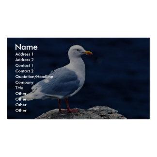 Gaviota glauca plantilla de tarjeta de visita
