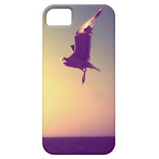 gaviota iPhone 5 cárcasas