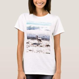 gaviota por el océano en la imagen de la playa playera