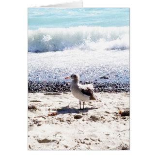 gaviota por el océano en la imagen de la playa tarjeta de felicitación