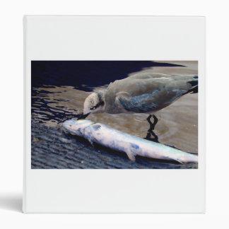 gaviota que come los pescados que pintan sepia azu