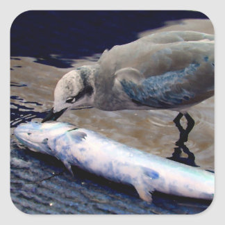 gaviota que come los pescados que pintan sepia calcomania cuadrada personalizada