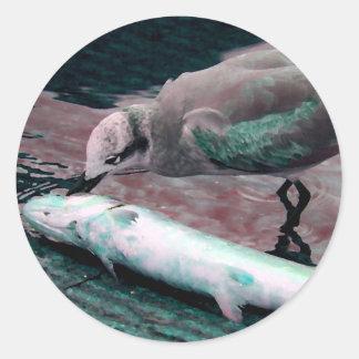 gaviota que come los pescados que pintan verde etiqueta redonda