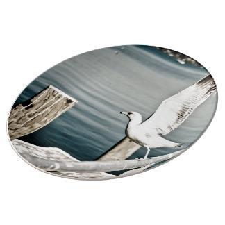 Gaviota que saca los carriles platos de cerámica