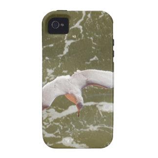 Gaviota que se desliza sobre las ondas Case-Mate iPhone 4 fundas