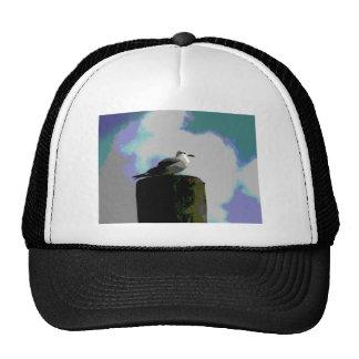 Gaviota que se sienta en una fotografía posterized gorros bordados