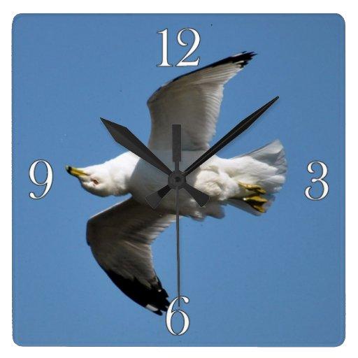 Gaviota que vuela fotografía divertida al revés de reloj cuadrado