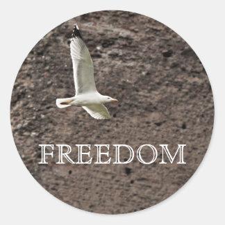 Gaviota que vuela libremente etiquetas redondas