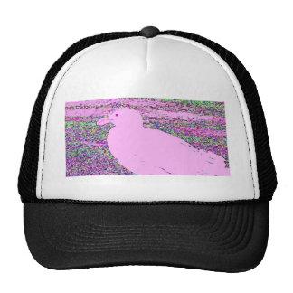 Gaviota rosada gorra