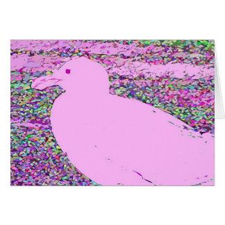 Gaviota rosada felicitaciones