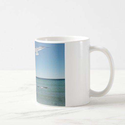 gaviota taza de café