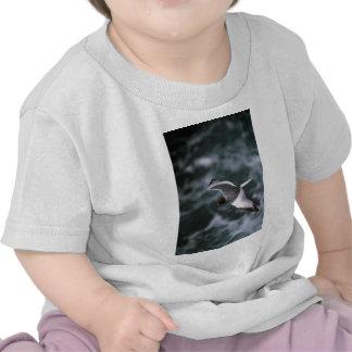 Gaviota Trago-Atada en vuelo Camisetas