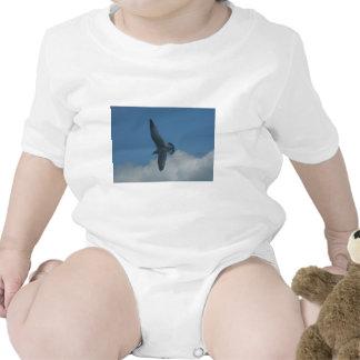 gaviota traje de bebé