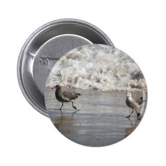 Gaviotas, botón estándar pin redondo de 2 pulgadas