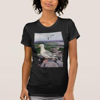 Gaviotas de arenques en línea de la playa rocosa poleras